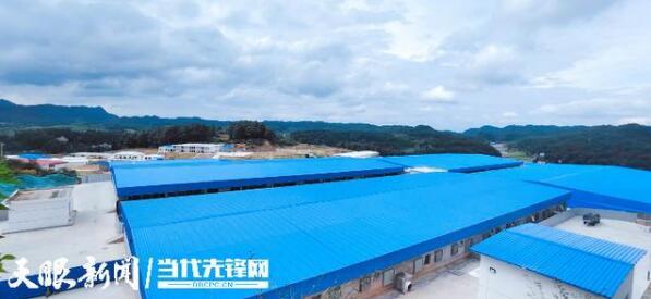 贵州:量质双升!贵阳市加快推动生猪产业跨越式发展