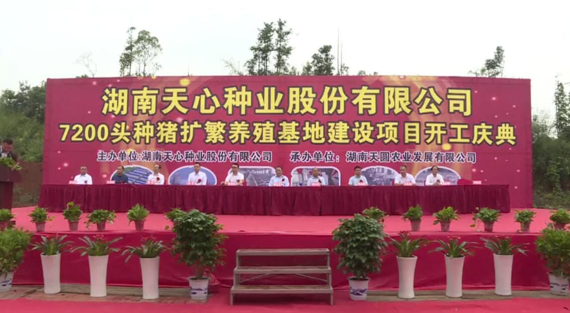湖南现代农业集团天心种业生猪生产线奠基开工