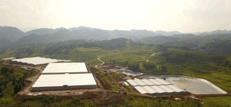 贵州黔西南州:培育引进龙头企业 生猪产业后劲十足