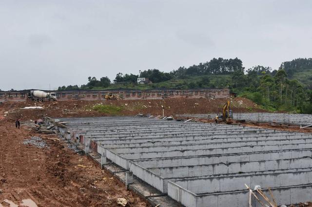 投资1亿元 四川荣县在建一个年出栏6万头生猪养殖场