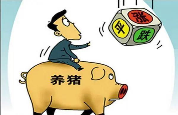 权威预测:北方猪价非涨即稳,双节看涨预期将成真还是落空