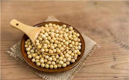 9月23日全国豆粕价格行情,保持涨势,继续偏强运行!
