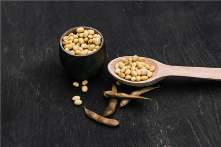 9月25日全国豆粕价格行情,行情承压,豆粕价格涨幅收窄!