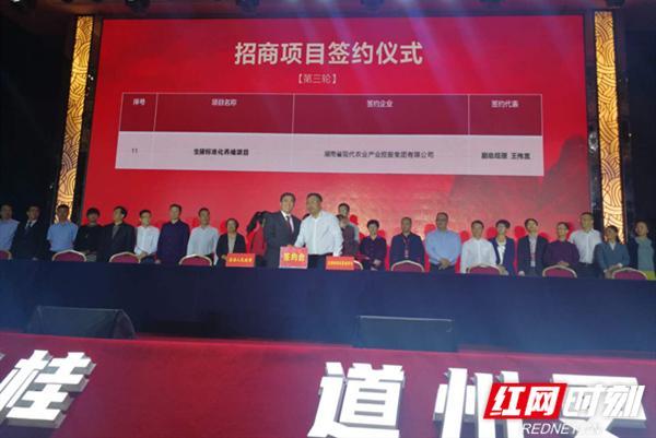 现代农业集团与道县人民政府举行生猪标准化养殖项目签约仪式