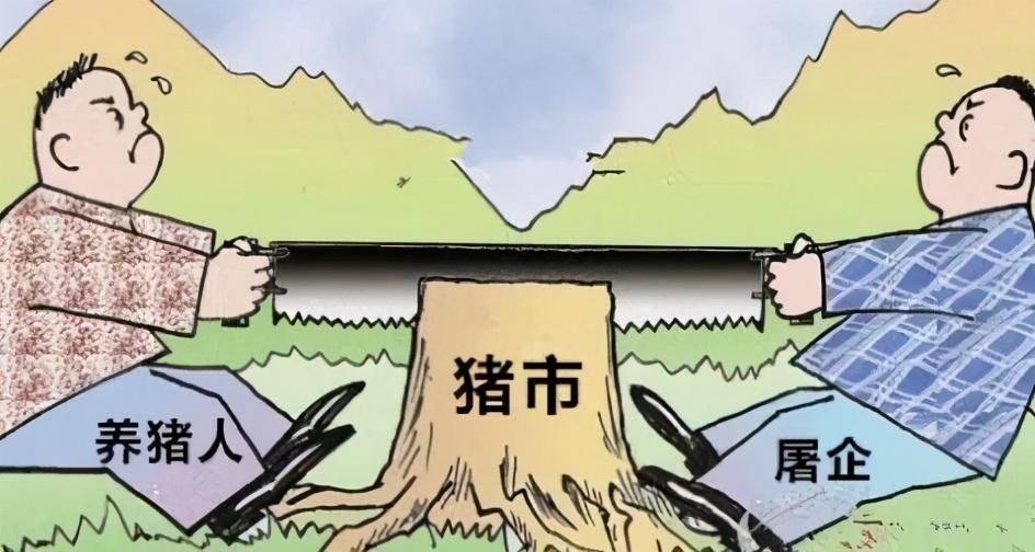 9月27日生猪价格:开涨!双节利好发力!这波猪价涨势能持续多久?