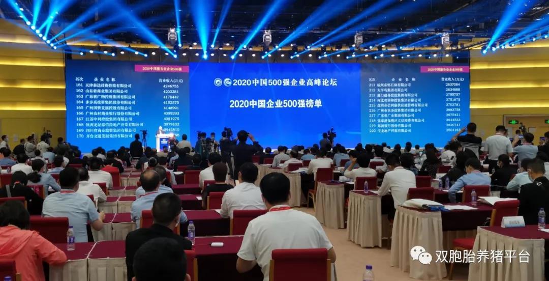 双胞胎666!中国企业500强排名再升3位,居293名!