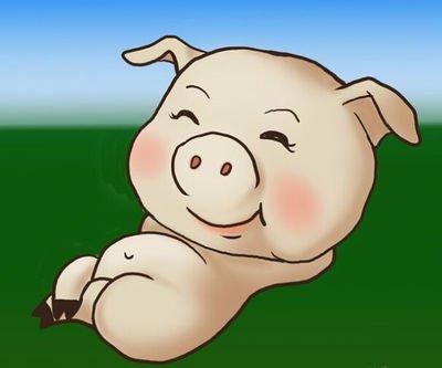 供应宽松基调不改 9月猪价开启泄洪模式