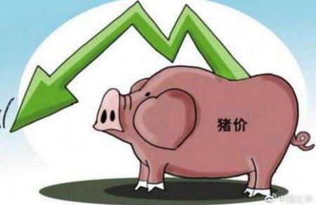 """A股猪肉股跌势不止背后:""""二师兄""""价格大幅下跌"""