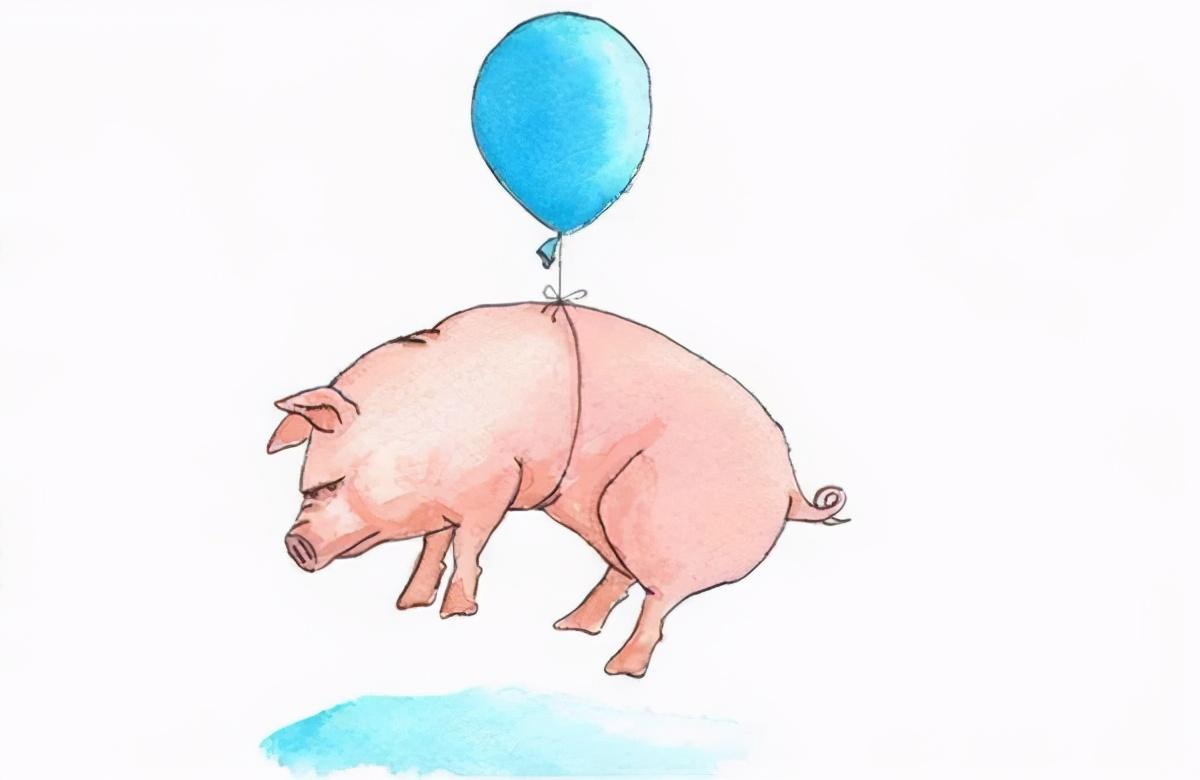 9月30日生猪价格,南方地区逆袭大涨!双节猪价稳了?答案来了