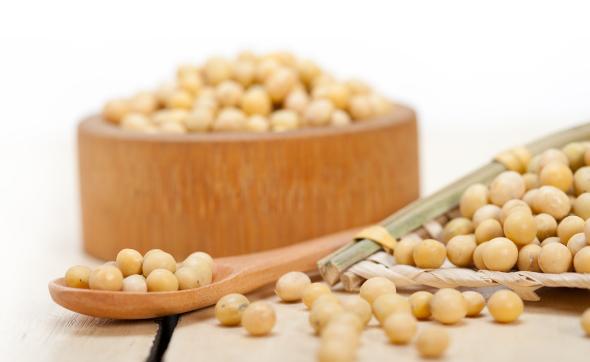 10月1日全国豆粕价格行情,价格坚挺,节日豆粕继续涨!
