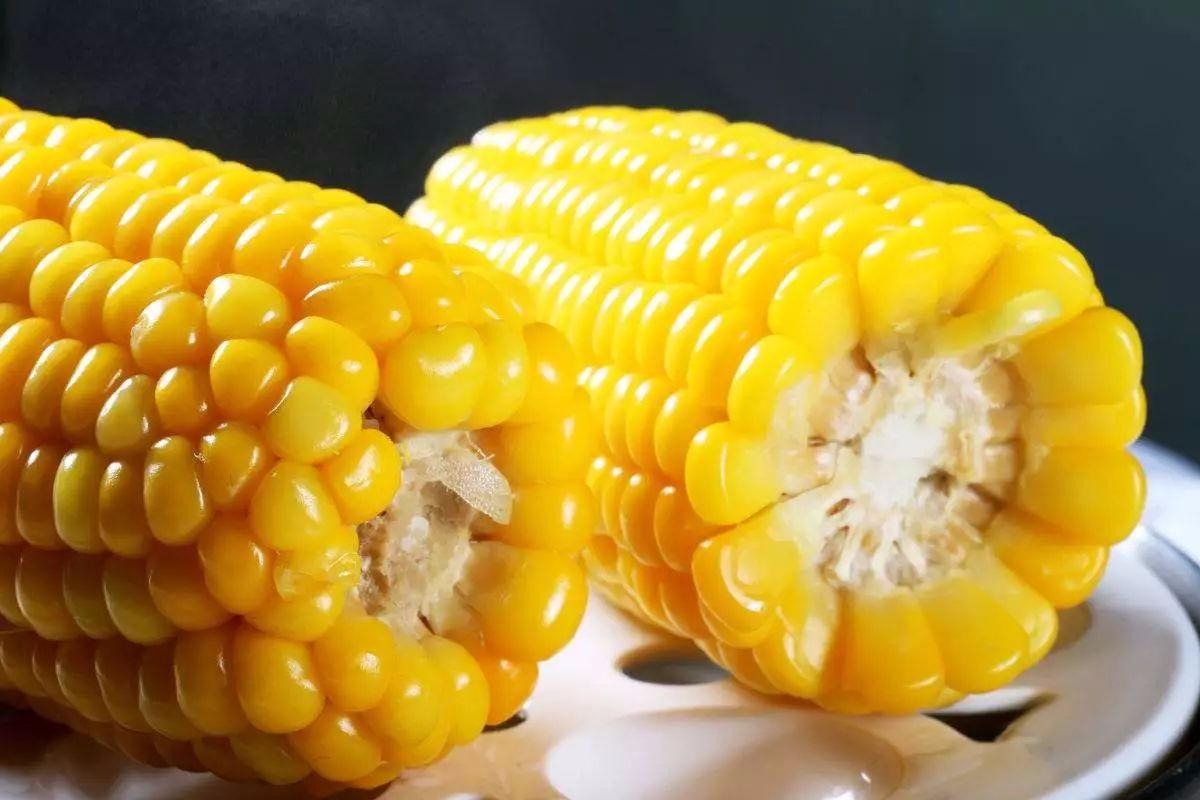 10月1日全国玉米价格行情,玉米供给的影响,维序下跌态势!