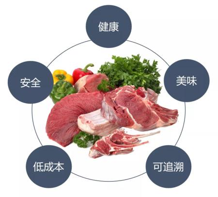 从农业发展趋势看养猪业的机会