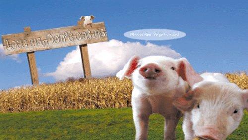 疯狂!建一个猪场6000万起步,巨头扩张对行业影响几何?