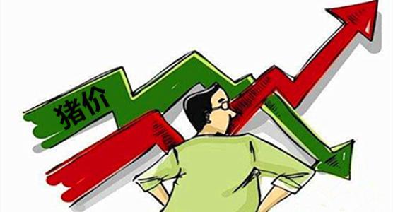 10月5日生猪价格,再跌!后期生猪价格无硬性支撑恐会再度下跌!