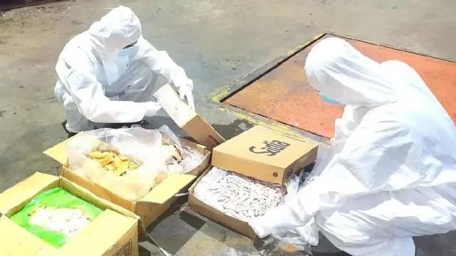 162吨来源不明冻肉被截获!国庆假期广东、广西连续发生5起海上走私案