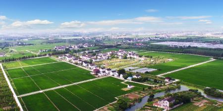 牧原回应占用农田养猪:涉及场区占在建项目比例较低影响较小
