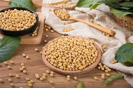 10月9日全国豆粕价格行情,豆粕行情强劲,节后依旧保持上涨!