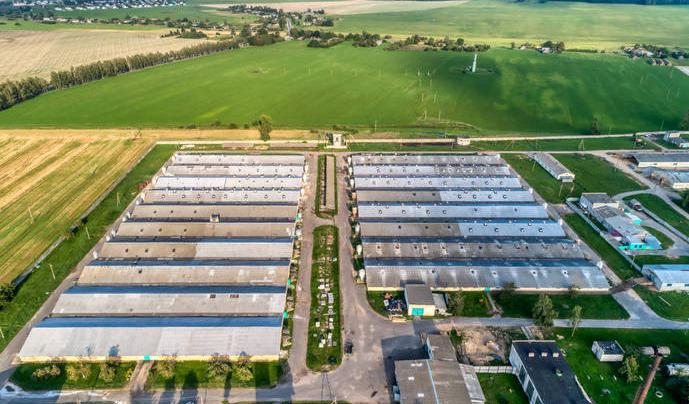 建设母猪养殖场 傲农生物拟为合作方融资担保8000万元