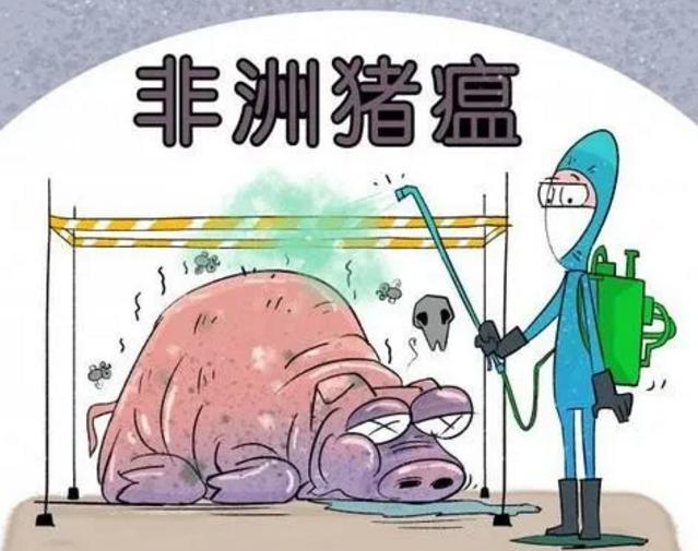 一周国际动物疫情动态——非洲猪瘟