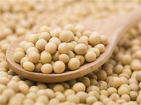 10月13日全国豆粕价格行情,豆粕价格易涨难跌,天气炒作是其一的因素!