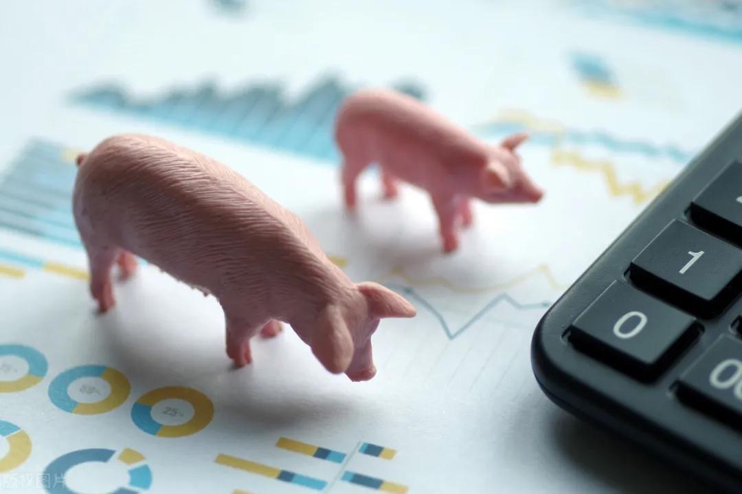 10月16日生猪价格,猪价连跌不止,9月CPI回落至1.7%,好消息是......