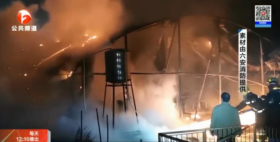 安徽六安一养猪场突发火灾,6头生猪被烧死亡,损失惨重