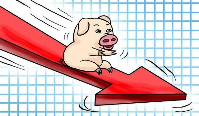 10月21日15公斤仔猪价格,育肥成本线跌破,仔猪下滑风险需警惕!