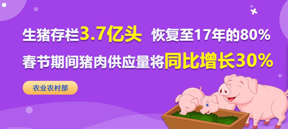 3.7亿头!生猪存栏恢复至17年8成,春节期间猪肉供应量将同比增长30%