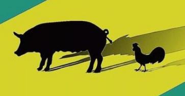 囤猪千万,福布斯榜上猛蹿?养猪养成首富秦林英最近有点慌