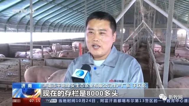 49元/公斤,猪肉价格首次同比下降!农业农村部:生猪生产恢复形势好于预期