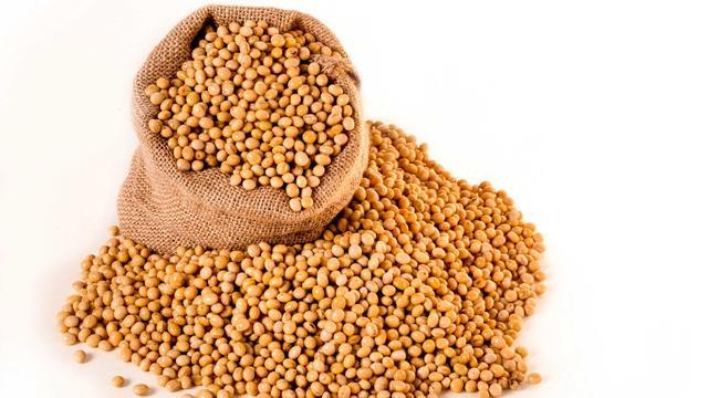 10月27日广西各市区豆粕价格行情,后劲不大!今日广西豆粕价格与昨日基本持平!
