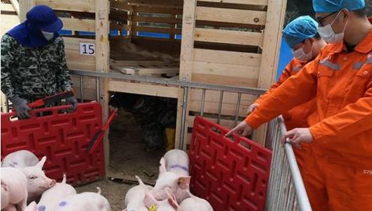 中国牧工商集团有限公司