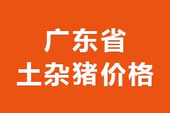 2020年11月24日广东省各市区土杂猪生猪价格行情走势报价