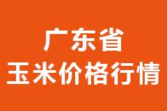 2021年01月25日广东省各市区饲料原料玉米价格行情走势报价