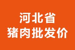 2021年02月01日河北省各市区白条猪肉批发均价行情走势报价