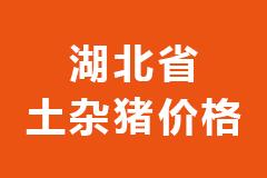 2021年02月09日湖北省各市区土杂猪生猪价格行情走势报价