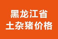 2020年10月30日黑龙江省各市区土杂猪生猪价格行情走势报价