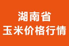 2020年12月31日湖南省各市区饲料原料玉米价格行情走势报价