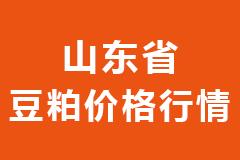 2021年02月23日山东省各市区饲料原料豆粕价格行情走势报价