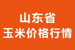 2021年01月29日山东省各市区饲料原料玉米价格行情走势报价