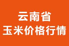 2020年12月17日云南省各市区饲料原料玉米价格行情走势报价