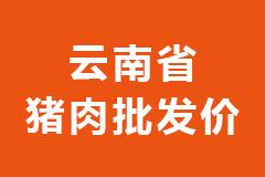 2021年02月25日云南省各市区白条猪肉批发均价行情走势报价