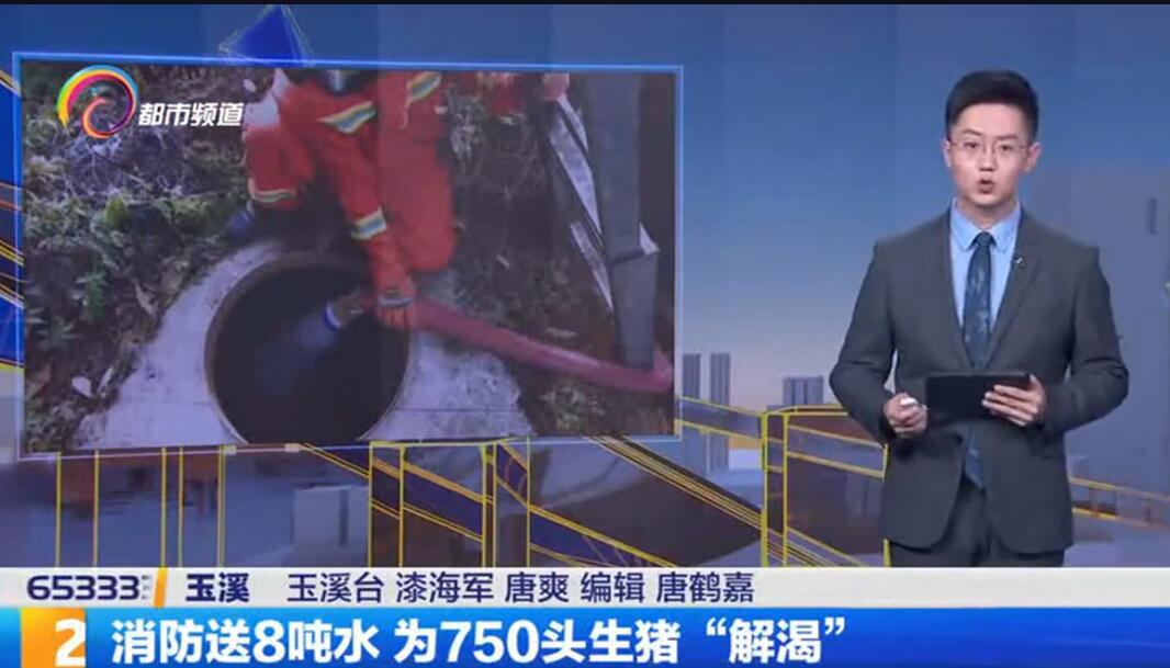 """猪场断电2个月,消防送8吨水 为750头生猪""""解渴"""""""