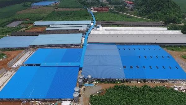 位列第一!扬翔获评2020年度广西工业企业质量管理标杆