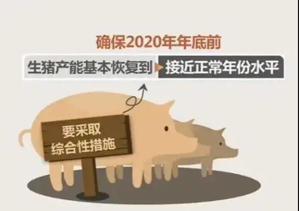 猪业扶持政策大汇总!您拿到了吗?!