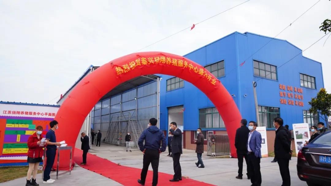 又一家!江苏泰兴扬翔养猪服务中心开业了