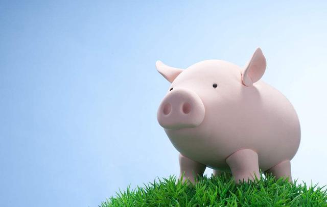 猪肉价格一路下行挫伤股价,猪肉股还能翻盘吗?