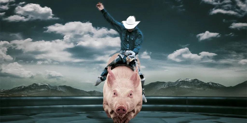 猪肉价格连降9周 天眼查专业版数据显示今年我国新增生猪养殖相关企业较去年同期翻了一番