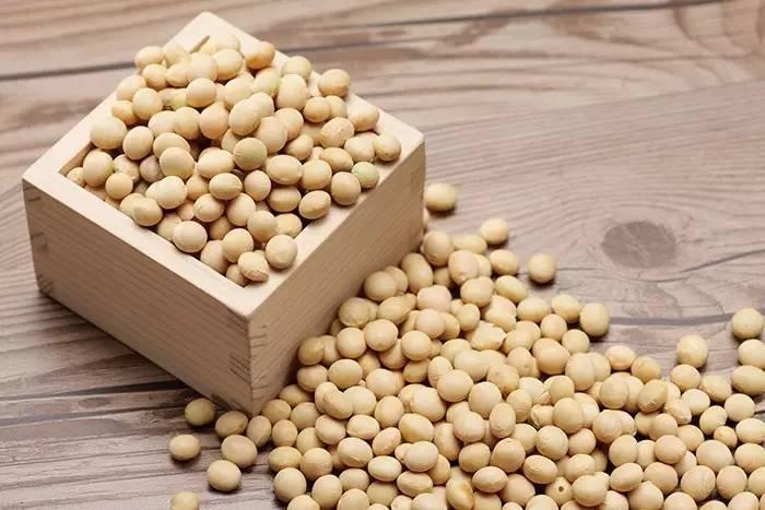 """11月9日饲料原料,大涨的玉米""""蔫""""了,豆粕成本依旧占主导?"""