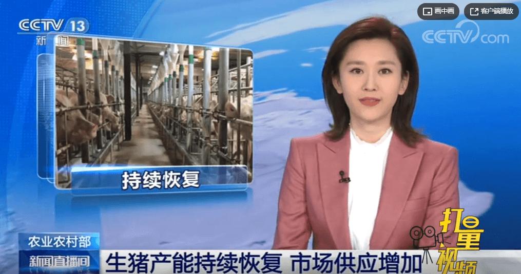 农业农村部:生猪产能持续恢复,市场供应增加